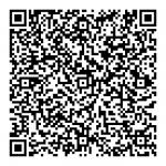 Pianzola QR code